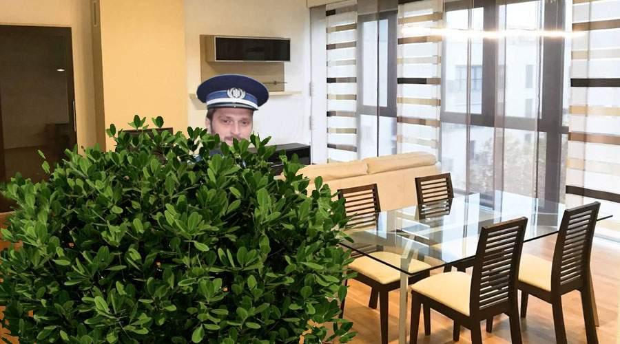 Stăm acasă! Un polițist și-a plantat un tufiș în sufragerie, să pândească cu radarul de-acolo