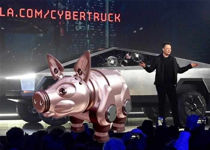 România a produs primul porc electric, să avem ce căra cu camioneta lui Elon Musk