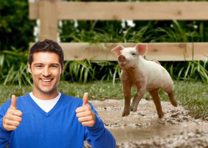 Secretul celor care nu se îngraşă: mănâncă un pic de porc zilnic, să devină imuni la slănină
