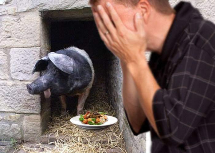Tensiuni într-o gospodărie din Vâlcea. O familie are un porc sclifosit, care nu mănâncă chiar orice
