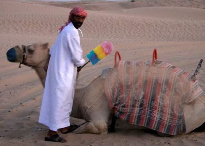 Bucureşteni revoltaţi: Cândva alimentam toată ţara cu praf, dar am ajuns să îl importăm din Sahara