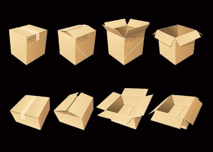 """S-a lansat programul """"Prima cutie de carton"""", destinat tinerilor boschetari"""