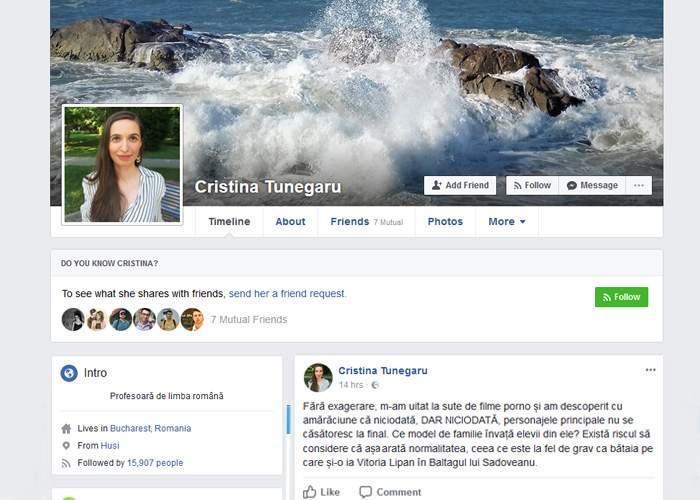 """După Baltagul, profesoara de pe Facebook atacă și filmele porno: """"Niciodată nu se căsătoresc la final"""""""