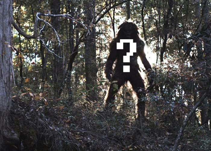 Un nou fenomen paranormal! Lângă pădurea Baciu a fost zărit un absolvent de Automatică fără job