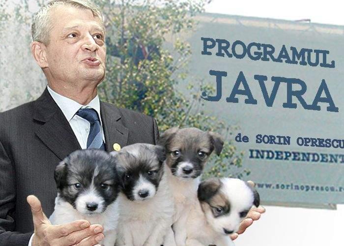 Sorin Oprescu va demara Programul JAVRA, de reînnoire a parcului de câini al Capitalei