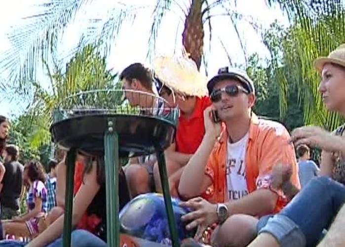 Timişorenii, revoltaţi că în palmierii puşi de primar nu creşte mazăre