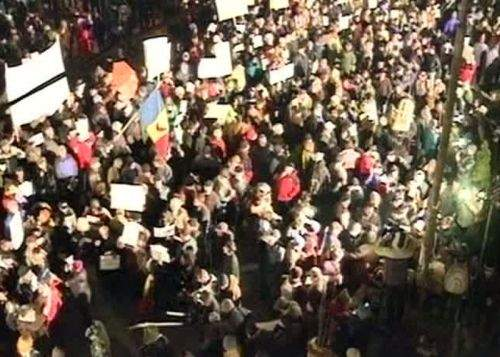 Crescătorii de gorile protestează în faţa Guvernului împotriva eliminării subvenţiilor