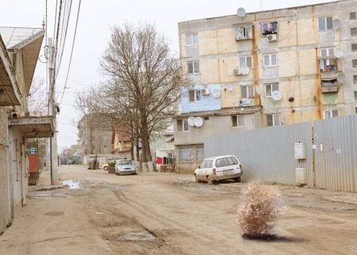 Un locuitor din Rahova a dat hepatită șobolanilor: Locuitorii riscă foametea