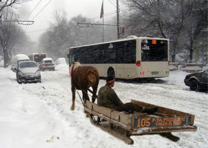 RATB înlocuieşte o parte din autobuze cu sănii trase de cai