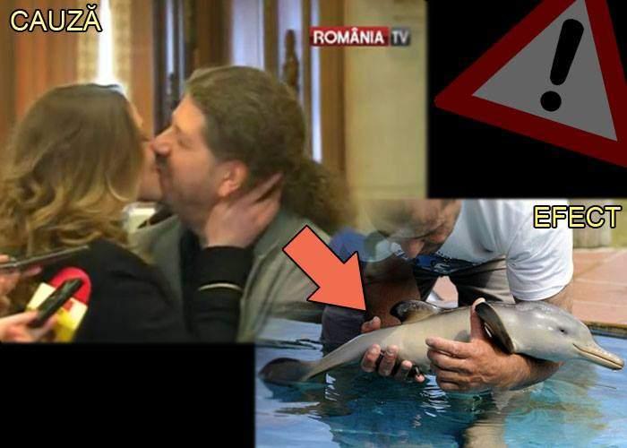 Dramatic! De fiecare dată când Remus Cernea sărută o femeie, un pui de delfin moare