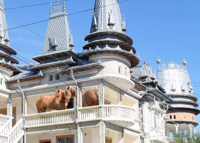 Locuitorii din Strehaia, terorizaţi de furturile de cai din locuințe