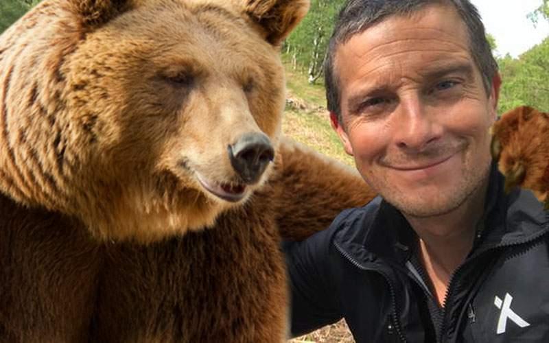 În noua sa emisiune, Bear Grylls te învață cum să faci selfie corect cu ursul