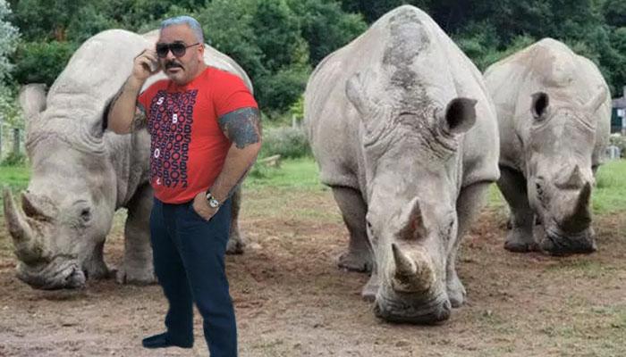 sile_rinoceru.jpg