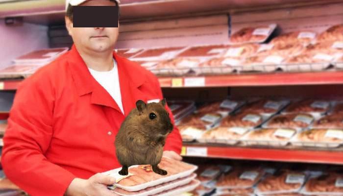 Gest firesc! Şoarecele din Kaufland regretă incidentul şi s-a întors în Mega Image, unde locuieşte