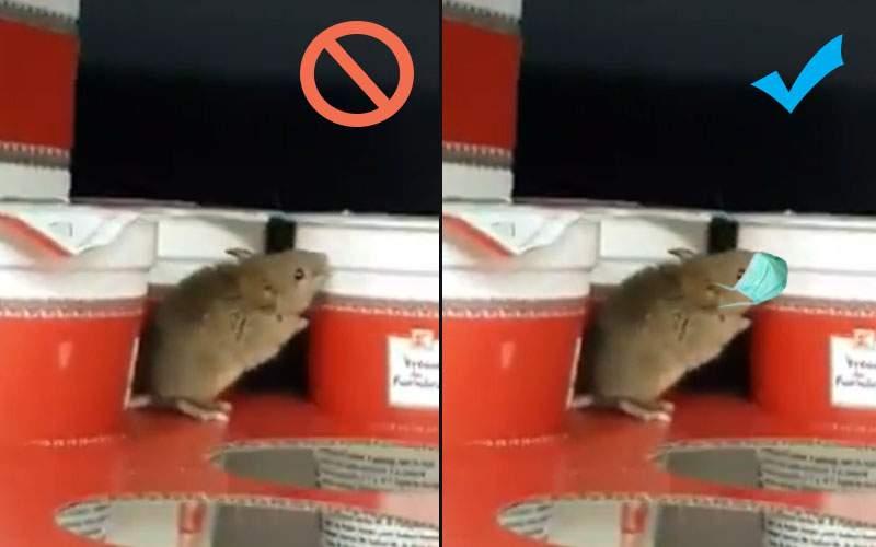 OPC a amendat Kaufland pentru că şoarecele lor nu purta mască