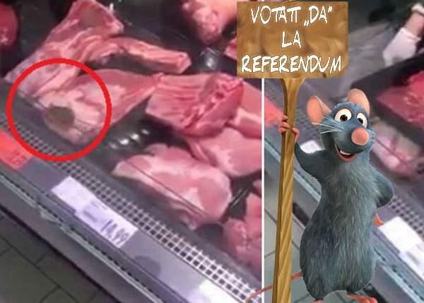 """Pâinea cu pliantele Coaliţiei pentru Familie e nimic! Şobolanul de la Kaufland are o pancartă cu """"Votaţi DA la referendum"""""""