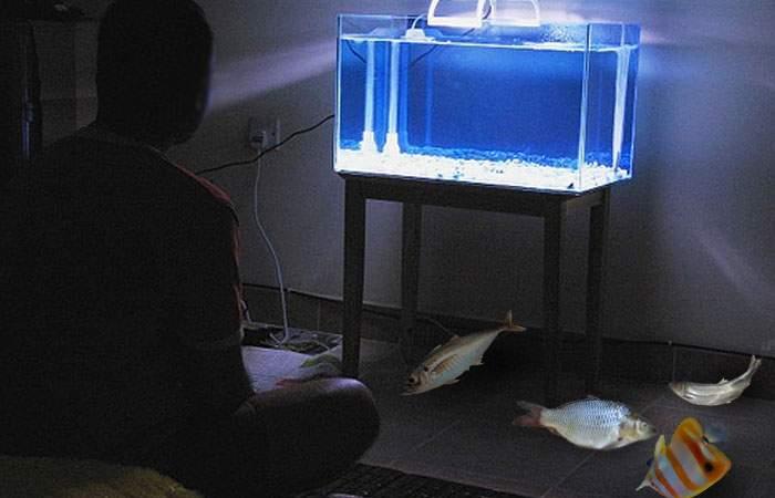 """Dan Şova îşi ţine peştii întinşi prin apartament: """"Mi-e milă să-i bag în acvariu, că se îneacă"""""""