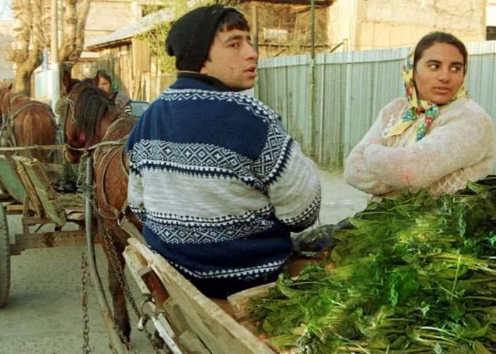Tot mai mulţi cetăţeni din Strehaia, prinşi la furat spanac după ce au auzit că conţine fier