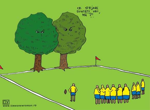 Stejarii