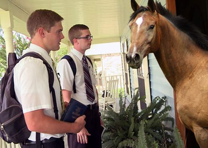 Un martor al lui Iehova a învăţat să necheze ca să poată merge din uşă în uşă în Strehaia