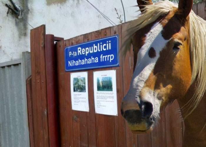 La Strehaia vor fi instalate plăcuţe bilingve, în română şi nechezat