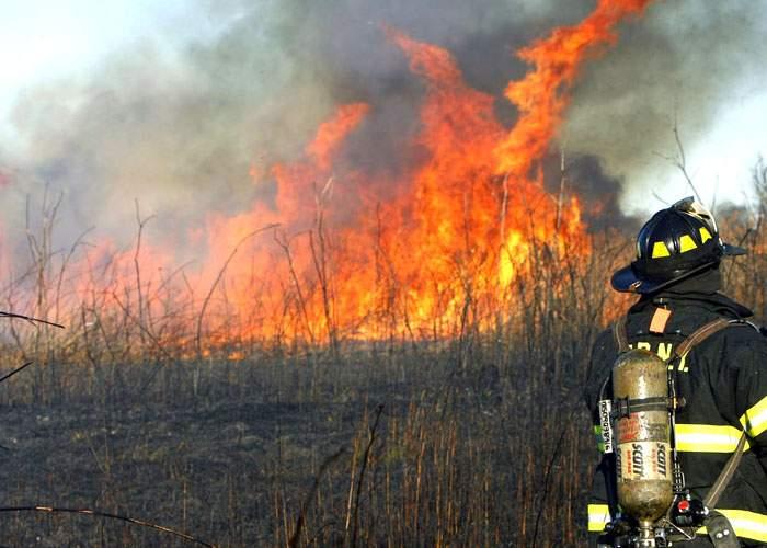 Incendiu istoric în Delta Văcăreşti! Bucureştiul devine primul oraş din lume iluminat cu stuf