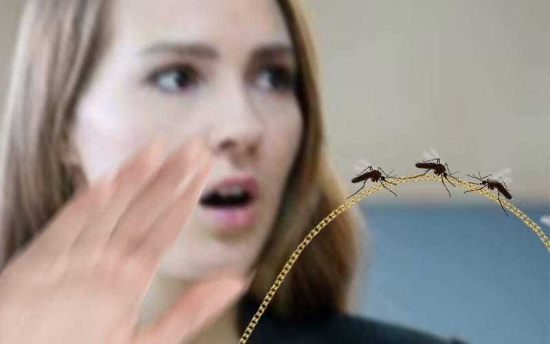 Un roi de ţânţari i-au smuls unei femei lanţul de la gât în Bucureşti
