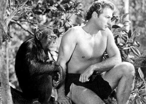 Celebrul Tarzan, şocat să afle că a fost înfiat de maimuţe când era mic