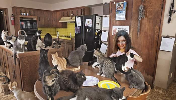 Tatiana Niculescu-Bran a demisionat pentru a petrece mai mult timp cu cele 174 de pisici ale sale