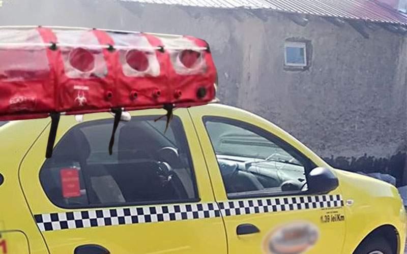 A apărut firma de taxi Izoleone, care te duce oriunde în siguranță, cu izoleta