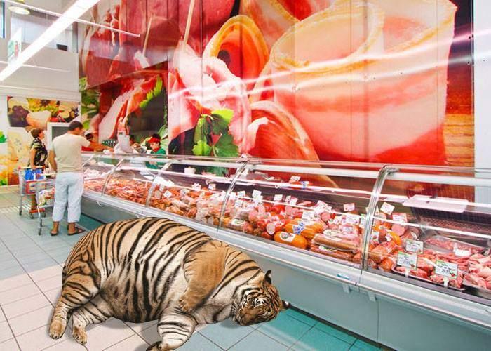 Supermarket închis la Sibiu, pentru că era un tigru în raionul de mezeluri