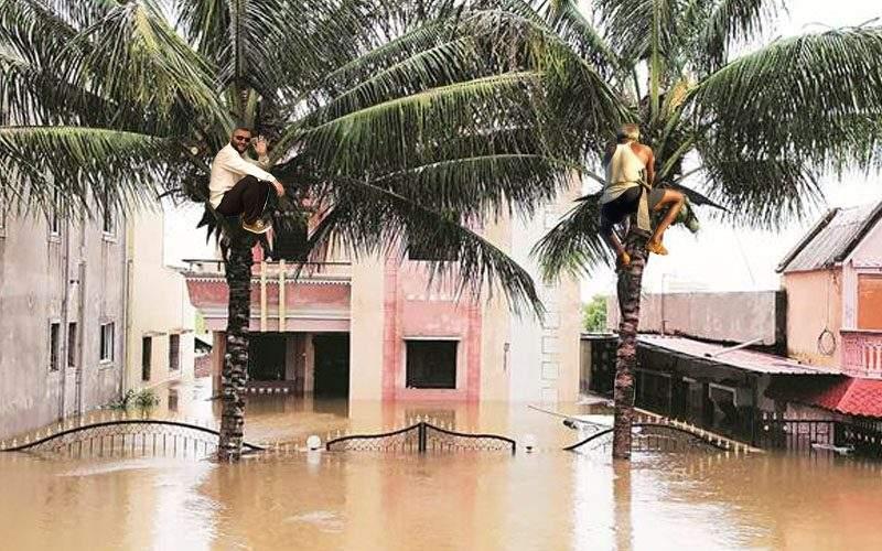 Vizionar! Zeci de timișoreni au fost salvați de viitură de palmierii lui Robu