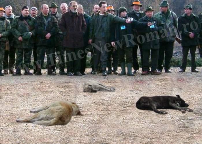 Ion Ţiriac va organiza partide de vânătoare de maidanezi în cartierul Balta Albă