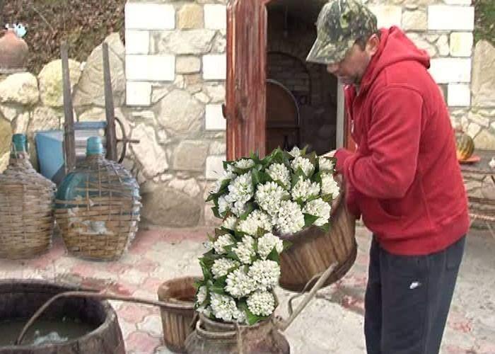 Veselie în Vaslui! În birturile din județ a apărut vestitorul primăverii, țuica de ghiocei
