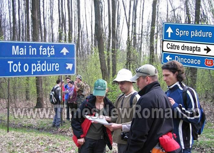 Elena Udrea cere indicatoare rutiere eronate ca să încurajeze turismul accidental