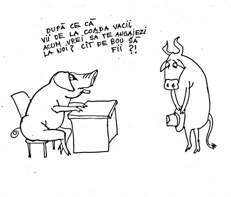 …un bou