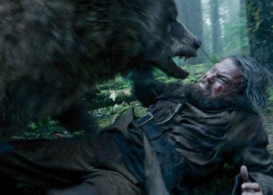 Sute de braşoveni au ieşit să se bată cu urşii, în speranţa că iau şi ei Oscarul