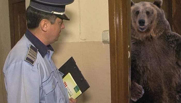 Un braşovean nu poate să intre în bloc, că nu-i răspunde ursul la interfon