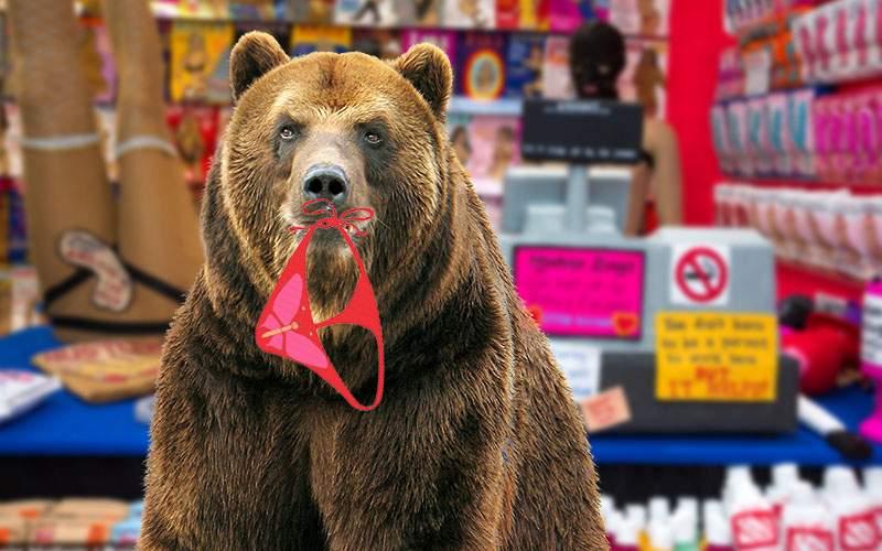 Un urs a intrat într-un sex shop din Braşov şi a mâncat 8 kg de chiloţi cu arome