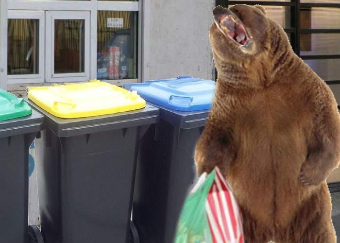 Urşii, o specie complet neînţeleasă. De fapt, ei vin la tomberoane ca să aducă înapoi gunoaiele lăsate de români în pădure