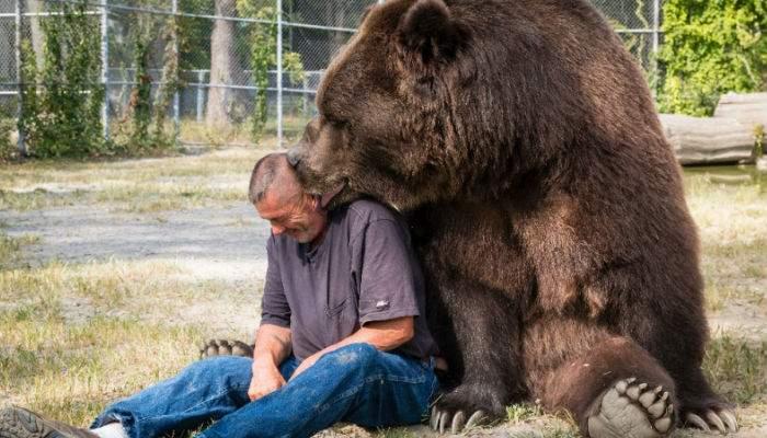 A apărut un urs sportiv, care pupă turiştii şi apoi îi eliberează