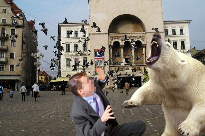 A mers prea departe? Nicolae Robu, primarul Timișoarei, a umplut străzile orașului cu urși polari