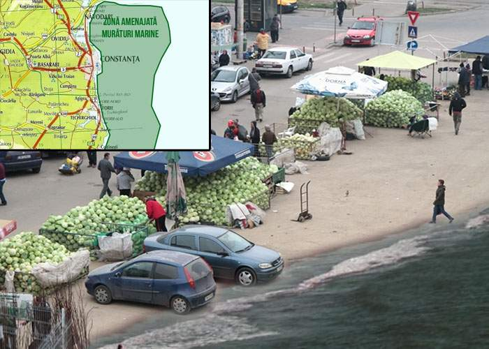 România devine cel mai mare producător de murături al lumii după ce a pus varză în Marea Neagră