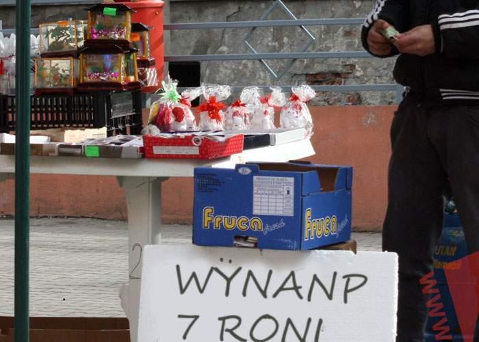 De când nu se mai fabrică, românii downloadează ultimele Winamp-uri şi le vând la suprapreţ în Obor