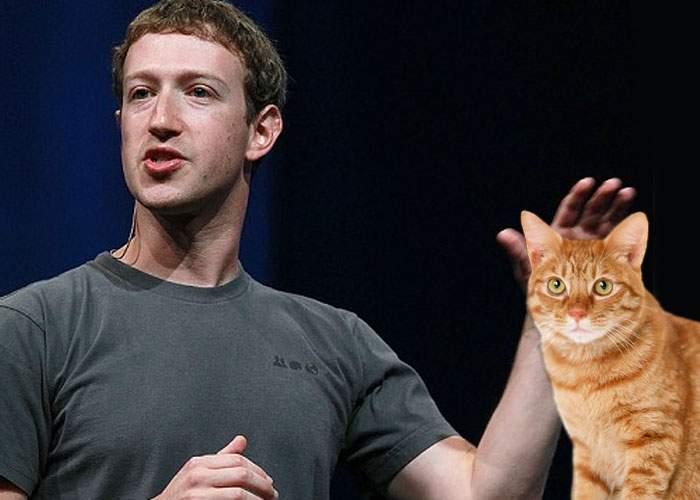 Facebook a făcut 10 ani! Zuckerberg le-a mulţumit pisicilor pentru că ţin reţeaua socială în viaţă