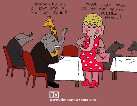 Cochetăria elefantului