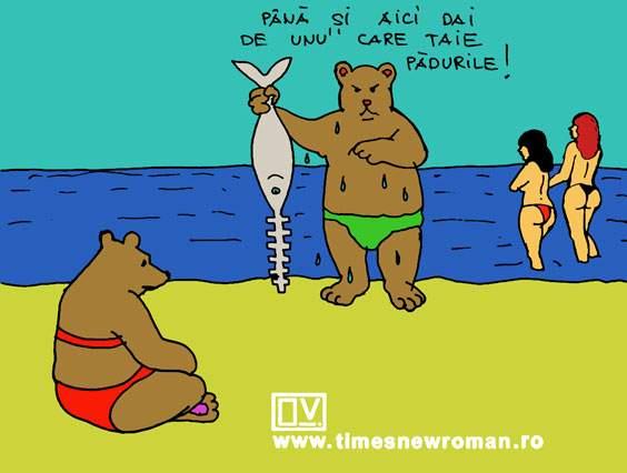 Ursul revoltat