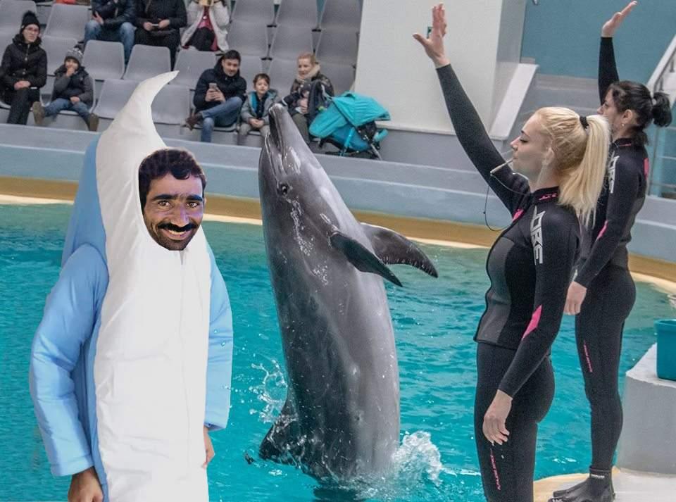 Un român s-a costumat în delfin și are casă și masă la Delfinariu în Constanța