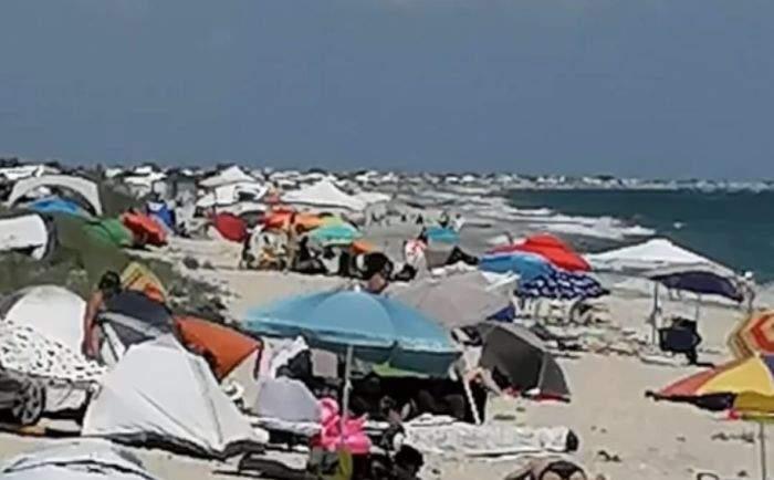 Ultimele BMW-uri sălbatice de pe plaja Corbu, ameninţate de extinderea şezlongurilor