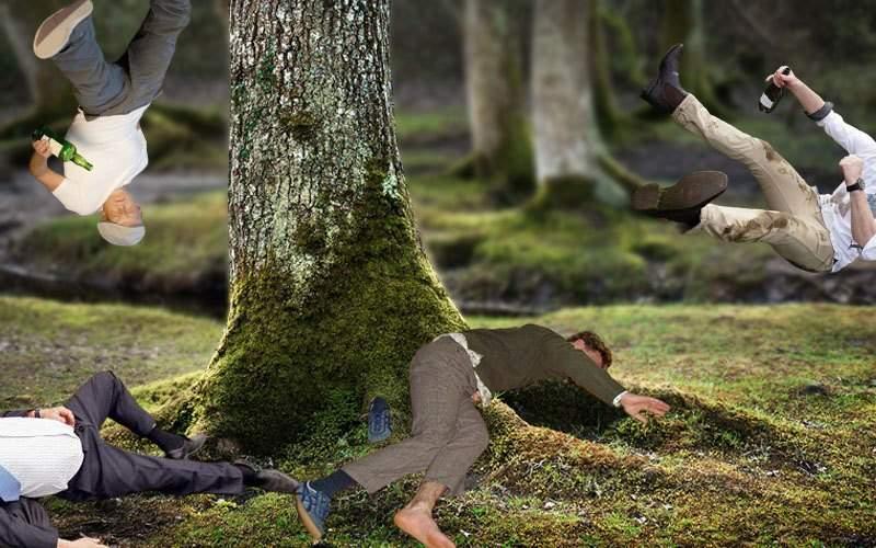 Plouă cu beţivi! Un inconştient a deschis o cârciumă în copac